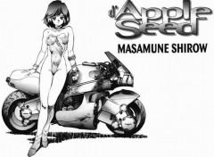 Fonds d'écran Manga Image sans titre N°48489