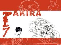 Fonds d'écran Manga Image sans titre N°48456