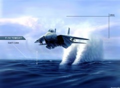 Wallpapers Planes F14-Tomcat