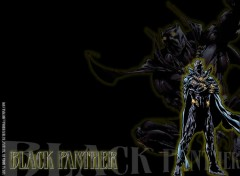 Wallpapers Comics Ruthay Black Panther 01