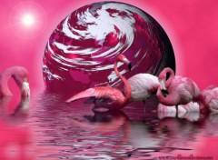 Wallpapers Digital Art Flamingos
