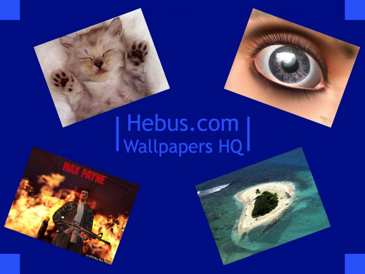 hebus wallpapers. Wallpapers Advertising Hebus.