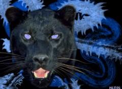 Wallpapers Digital Art Black Panther
