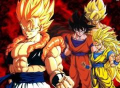 Fonds d'écran Manga goku-gogeta