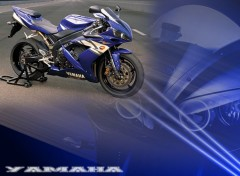 Wallpapers Motorbikes  R1 2004