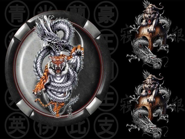 Fonds d'écran Fantasy et Science Fiction Créatures : Dragons Dragontiger