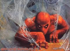 Fonds d'écran Comics et BDs Ruthay Spiderman 05