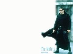 Fonds d'écran Cinéma matrix Latéral