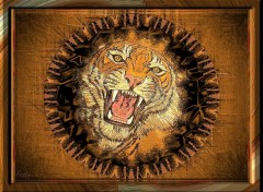 Wallpapers Animals Bengal