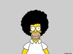 Fonds d'écran Dessins Animés Homer Afro