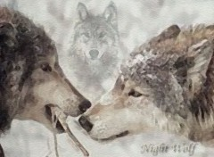 Wallpapers Animals Wolfs