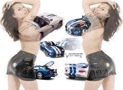 Wallpapers Cars viper pin up