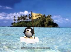 Fonds d'écran Informatique L'île Nux