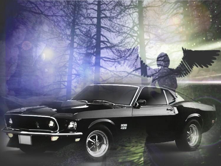 Fonds d'écran Voitures Mustang foret mustang