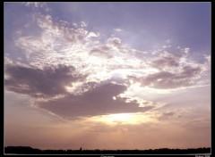 Fonds d'écran Nature Couché de soleil en Camargue