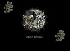 Wallpapers Digital Art Team Asian Dragon