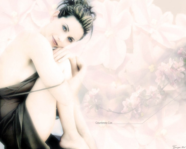 Wallpapers Celebrities Women Courteney Cox ..:Courteney:..
