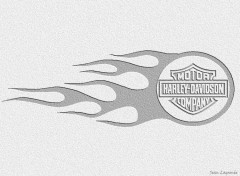 Wallpapers Motorbikes Logo Flaming Harley