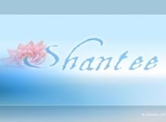 Fonds d'écran Art - Numérique Shantee !