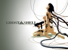 Fonds d'écran Manga ghost in the shell