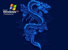 Wallpapers Computers Win dragon bleu..jpg