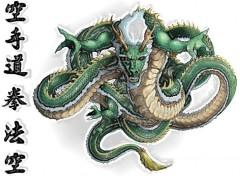 Fonds d'écran Manga Furious Dragon