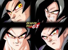 Fonds d'écran Manga Sangoku niveau 4
