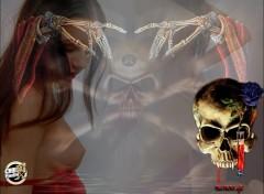 Fonds d'écran Erotic Art sauvons choi radio x