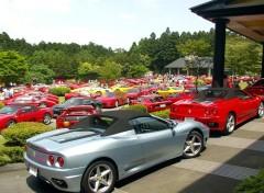 Fonds d'écran Voitures Ferrari