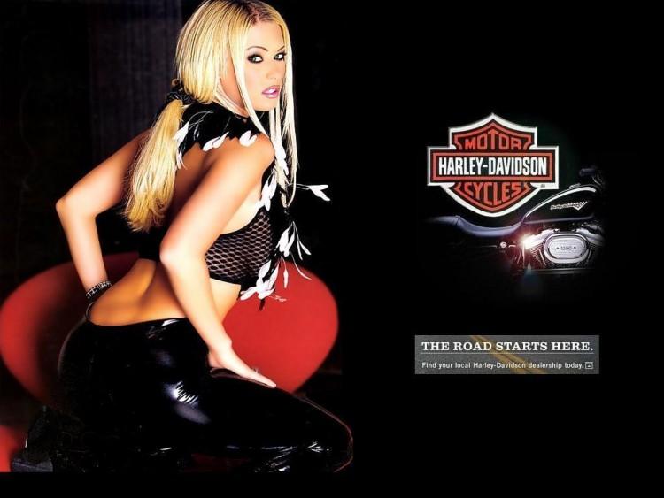 Fonds d'écran Motos Filles et motos Jenna Jameson - Harley Davidson 2005