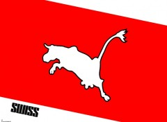 Wallpapers Brands - Advertising Swiss