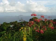 Fonds d'écran Voyages : Amérique du nord GWADA & LES SAINTES FUSION