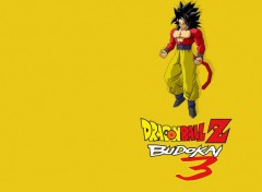 Wallpapers Video Games Dragon Ball Z Budokai 3 : Goku Super Sayan 4