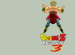 Wallpapers Video Games Dragon Ball Z Budokai 3 : Broly