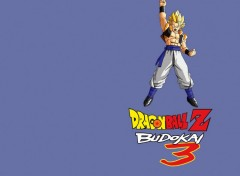 Wallpapers Video Games Dragon Ball Z Budokai 3 : Gogeta