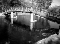 Fonds d'écran Nature pont B&W