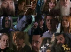 Fonds d'écran Cinéma Harry Potter et la Chambre des Secrets
