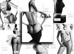 Fonds d'écran Erotic Art aubad2004