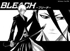 Fonds d'écran Manga Ichigo