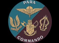 Fonds d'écran Grandes marques et publicité Para-Commandos Belges