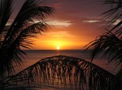 Wallpapers Trips : Africa Couché de soleil à Maurice 2