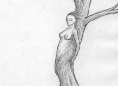Fonds d'écran Art - Crayon femme-arbre