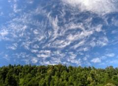 Wallpapers Nature cirrus a antillanca