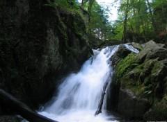 Fonds d'écran Nature Cascades des Vosges