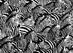 Wallpapers Art - Pencil Le troupeau