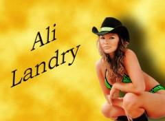Fonds d'écran Célébrités Femme Ali Landry