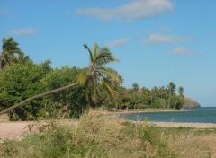 Fonds d'écran Voyages : Océanie La Pointe Nord de l'île