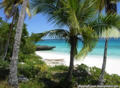 Fonds d'écran Voyages : Océanie Plage de Peng - Lifou - Nouvelle Calédonie