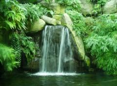 Fonds d'écran Nature Cascade verte