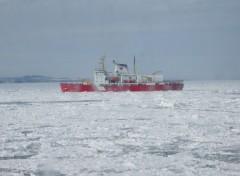 Fonds d'écran Bateaux Garde cote dans les glaces du St Laurent